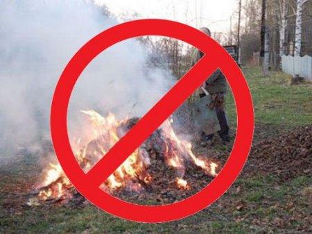 Про заборону спалювання сухої трави